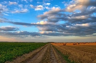 Open a Company in Agriculture in Malta